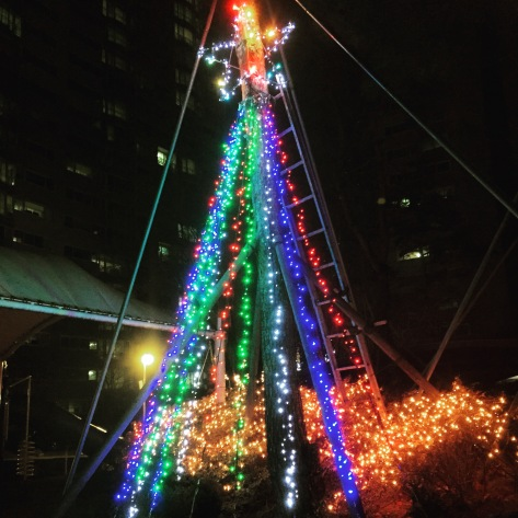 2015 December 036